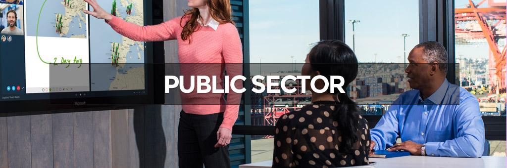 public-sector